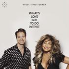 Kygo x Tina Turner