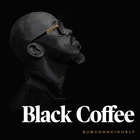 Black Coffee, Diplo ft. Elderbrook