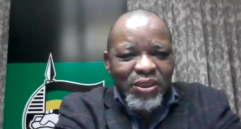 Gwede Mantashe ANC national chairperson May 2021