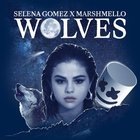 Wolves - Selena Gomez with Marshmello