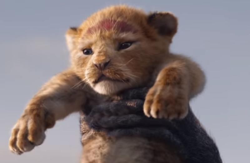 Lion King 0bhp