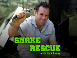 Snake Rescue with Nick Evans