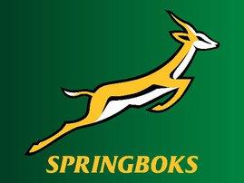 Springbok logo