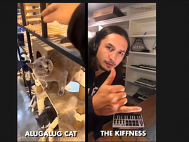The Kiffness x Alugalug Cat