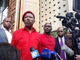 Julius Malema Consitutional Court