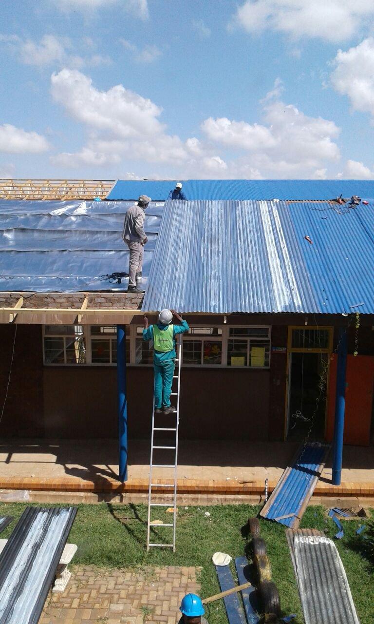 image protea rif rebuild 1