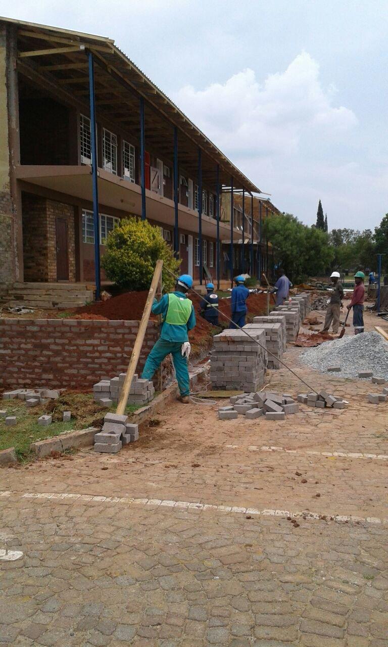 image protea rif rebuild 2