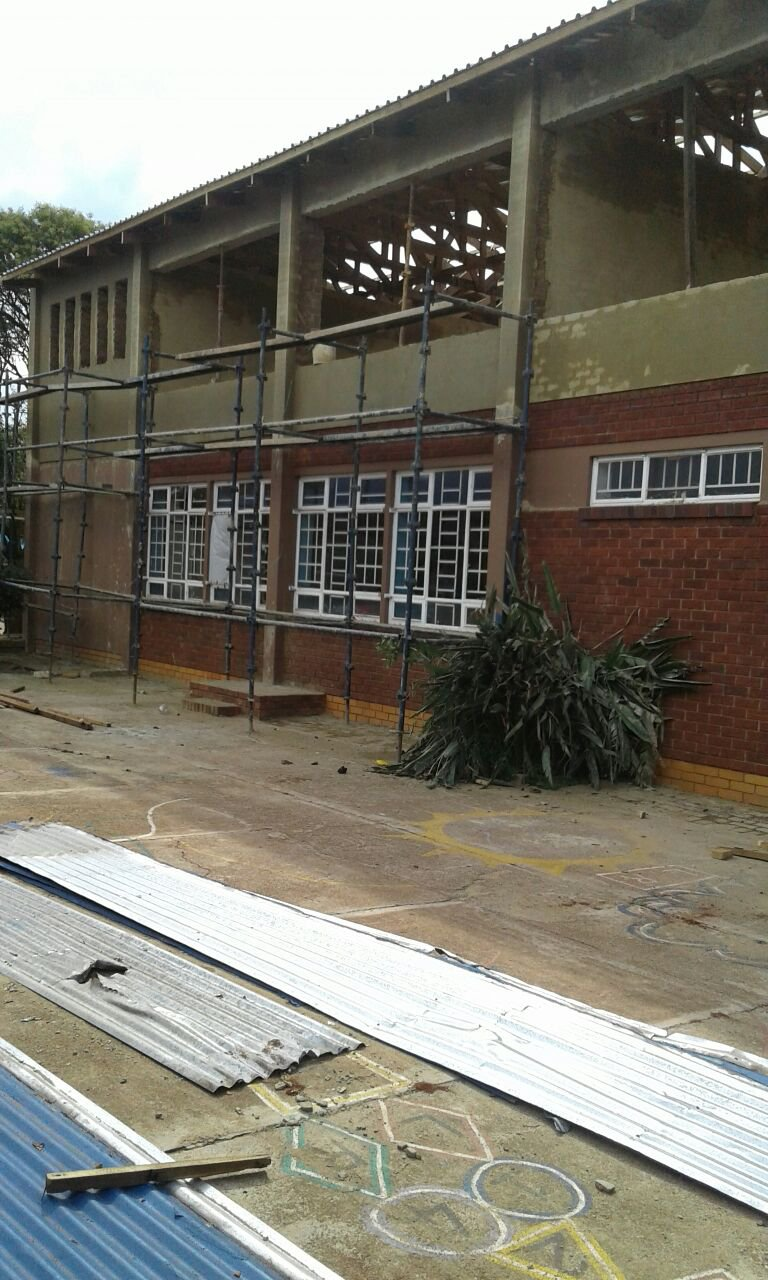 image protea rif rebuild 6