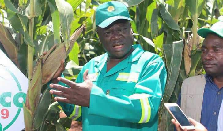 Zimbabwe's agriculture minister Perrance Shiri