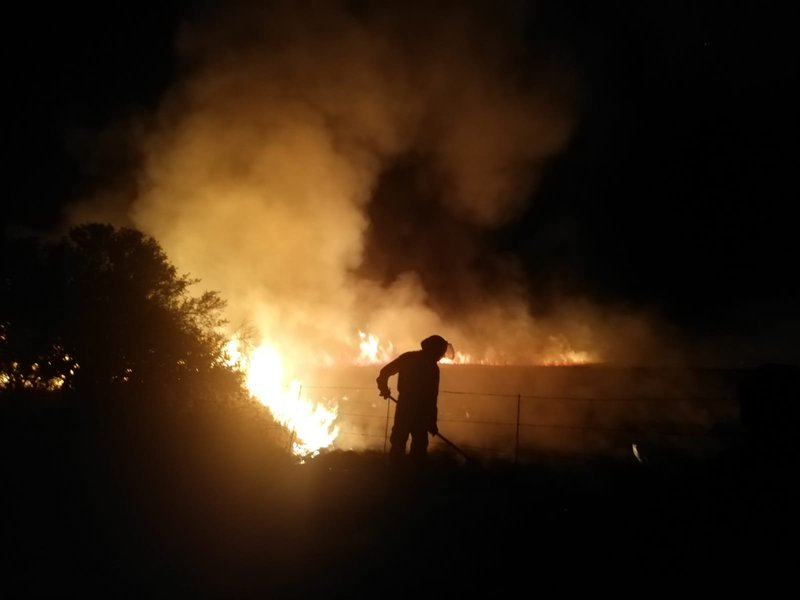firefighter fights fire in Free state veldfire wildfire