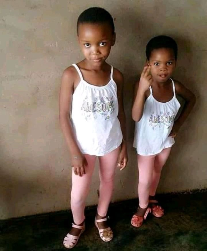Bodies of 2 missing Limpopo girls found in bushes