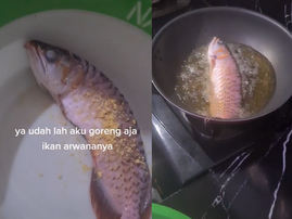 WATCH: When you ask him to clean the fish tank for the 100th time and he doesn't...
