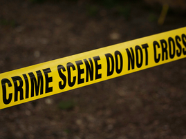 Brits mom, son tied to a tree during a robbery