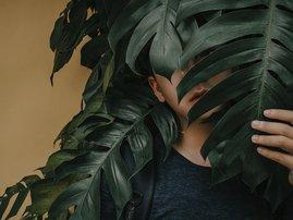 Boy near leaves / pexels