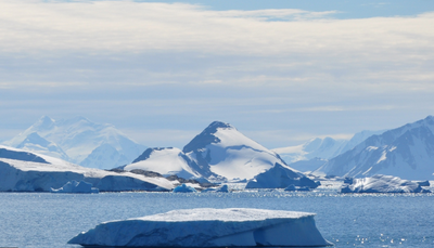 Climate change is turning Antarctica green, study finds - Jacaranda FM