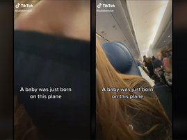 Baby plane born