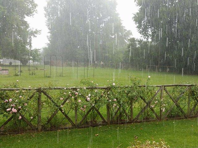 Rain at the berg
