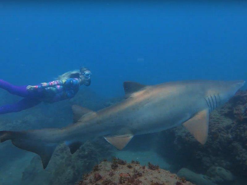 Beth Neale Pregnant Freedive
