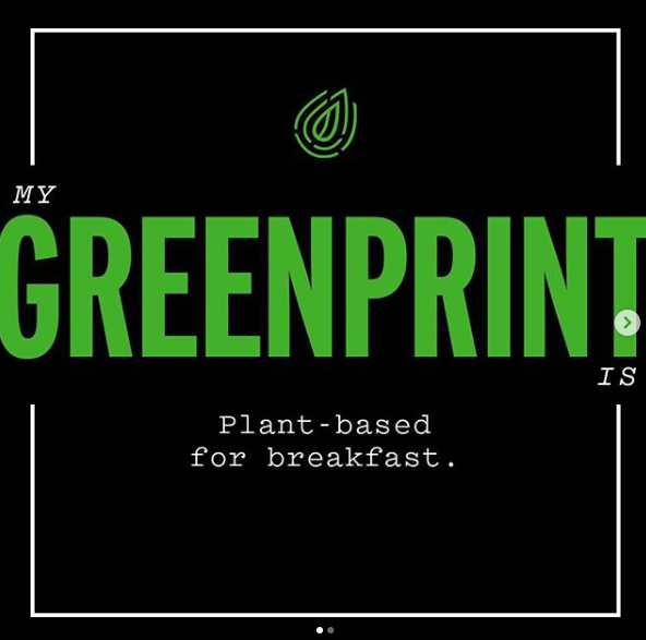 beyonce greenprint