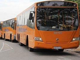 busses_1.jpg