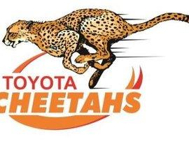 Cheetahs new logo