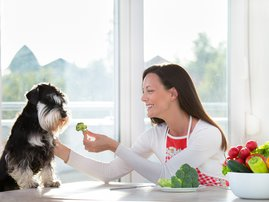 Woman feeding dog with broccoli