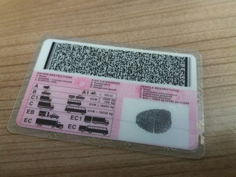 drivers licence