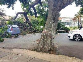 Durban winds cause havoc