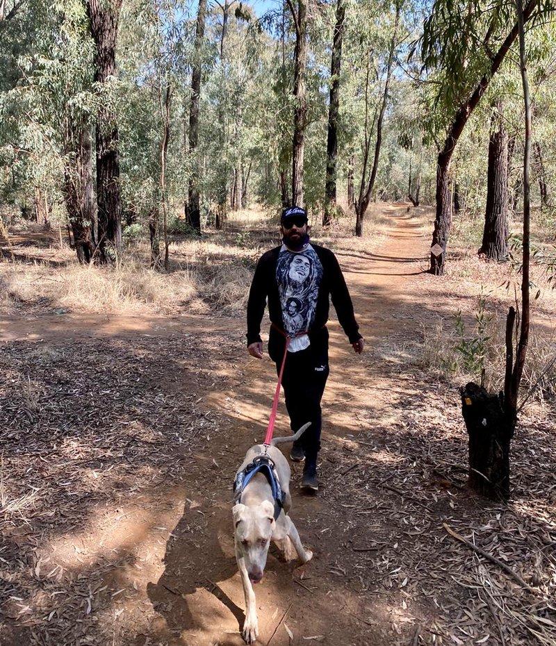 Martin hiking trail