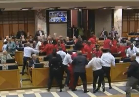 Fists fly as EFF removed from Parliament again
