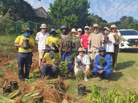 COMMUNITY: Durban Resident doing her bit to help bring the beauty back to her city