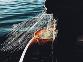 fishing_net.PNG