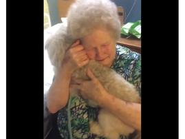 grandma meets new pet