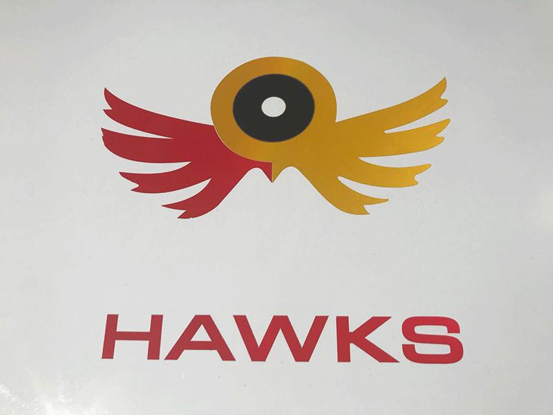 KZN Hawks