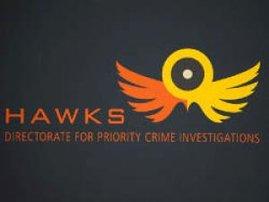 hawks.jpg