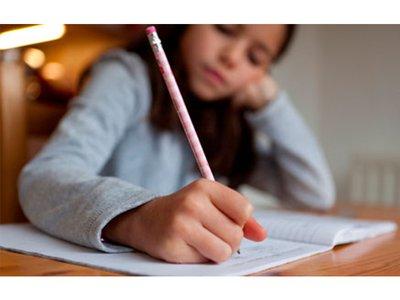 Should homework be compulsory