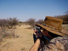 hunter_gallo_ZBs4QSv.jpg