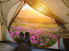 Relaxing with a tent in a summer mountain camp