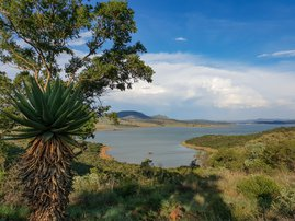 Wide shot of Spion Kop dam with cactus and tree. stock photo