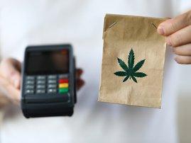 SA Government weed