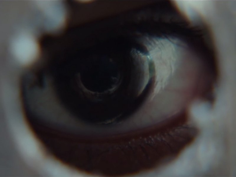 'It Comes At Night' movie trailer will give you nightmares!