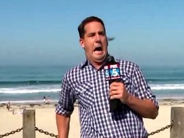 Reporter completely freaks out over a tiny bug on live TV