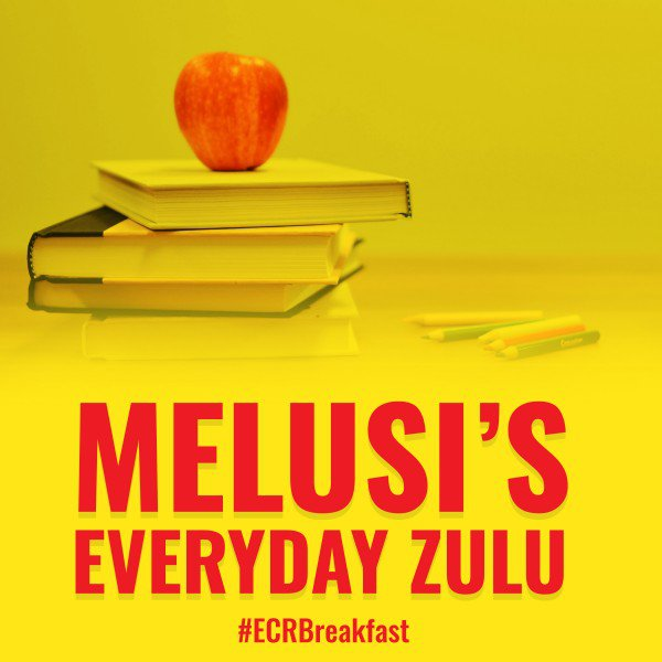 melusi's everyday zulu new artwork