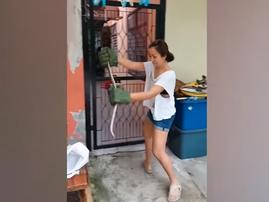 thai mom catches snake