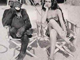 monkey-see.jpg