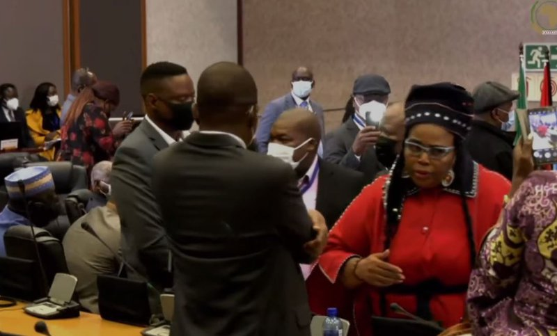ANC chief whip Pemmy Majodina kicked as Pan African Parliament descends into chaos
