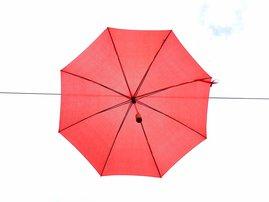 Brasil umbrella