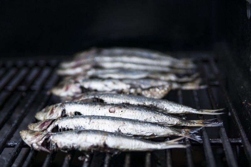Sardine pic