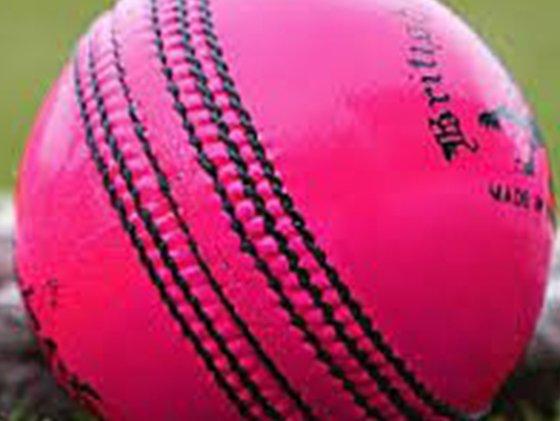 Cricket ball - generic