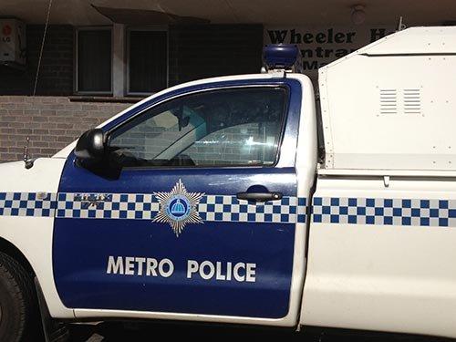 policecar_dm_7.jpg